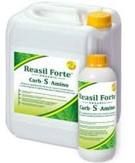 Reasil Forte Carb-S-Amino (W/V)